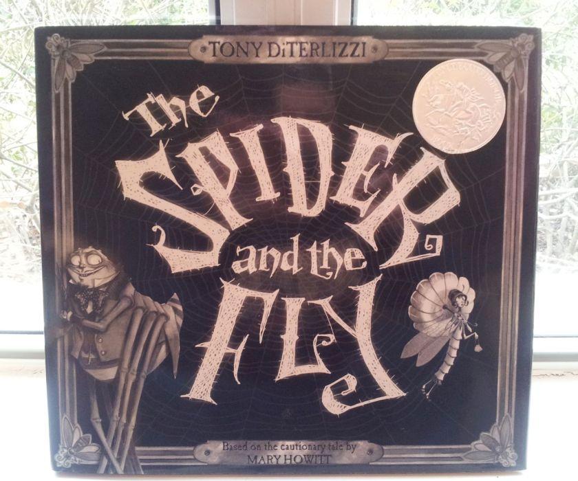 SpiderandFly2