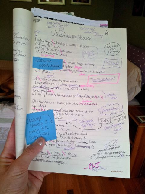 """My poem """"Wildflower Season"""" after a revision workshop with Cindy Huyser at this year's AIPF"""