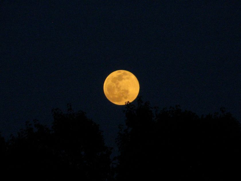 Full moon rising over Austin, TX - May 3, 2015, photo by Carie Juettner
