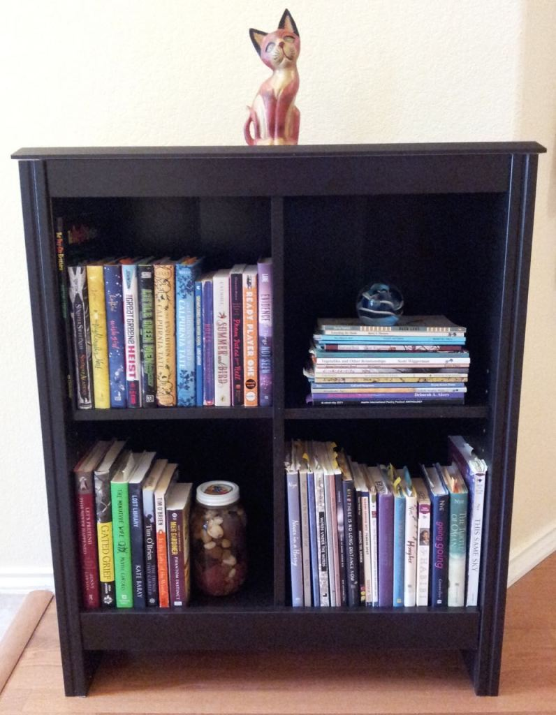 My new bookcase! Which I put together mostly by myself. Every book shown here was written by a Central Texas author. I love living in such a vibrant literary community.