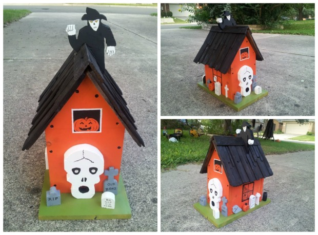 Build a nest if you DARE, little birdies!