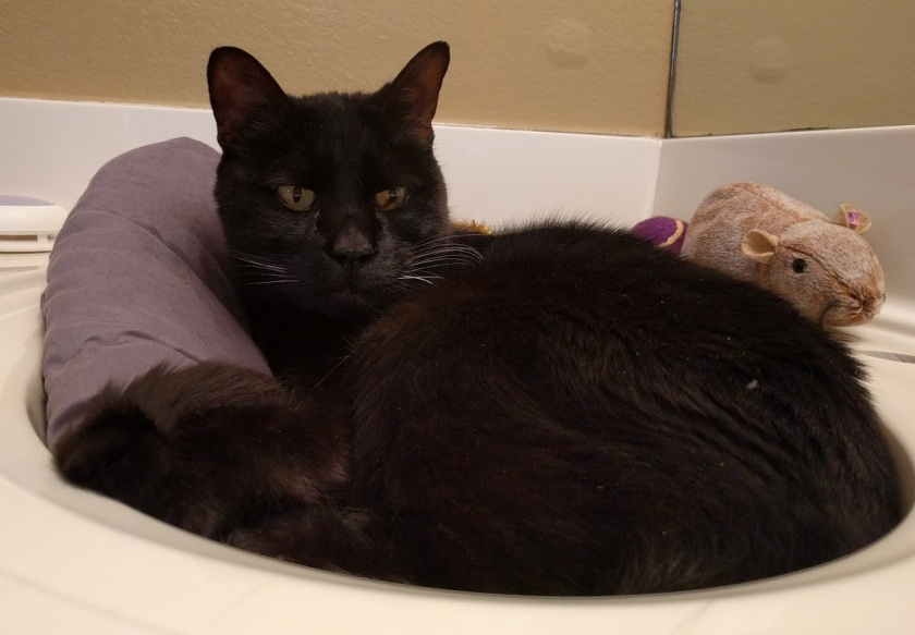 Gink, in a sink.
