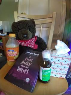 Photo of teddy bear, tissues, orange juice, medicine, and a book